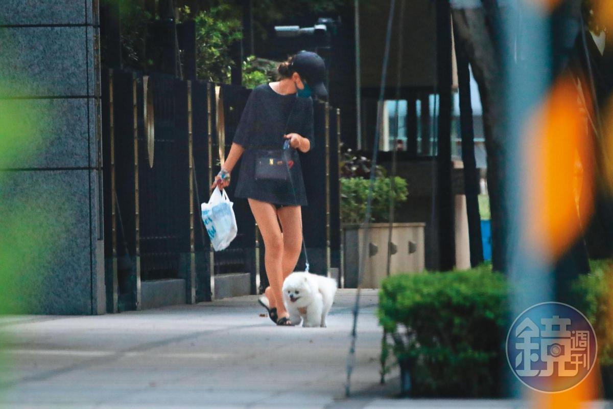 17:45 李毓芬到便利商店採買了一大包零食,牽著愛犬走回家。