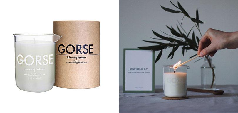 THE CONRAN SHOP - Laboratory Perfumes Scented Candle - Gorse