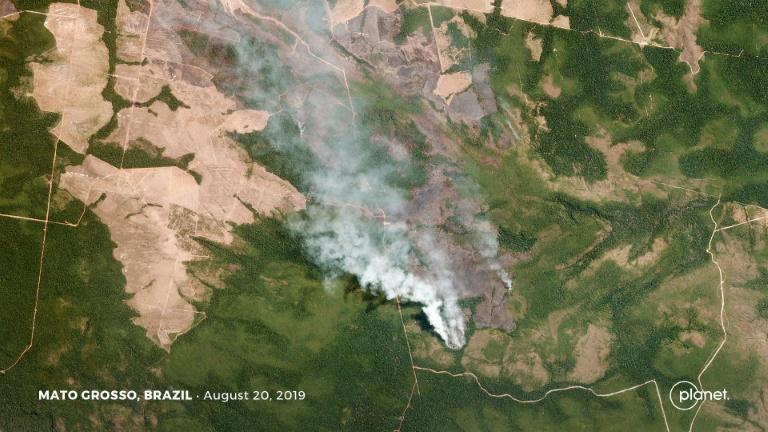 地球之肺亞馬遜雨林大火延燒數周,你關心嗎?