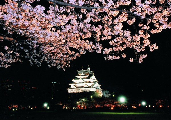 https://www.osaka-info.jp/jp/events/festivals_events/8295.html
