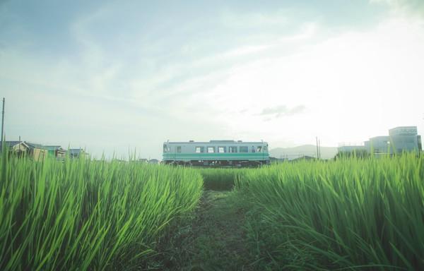http://kishu-railway.com/