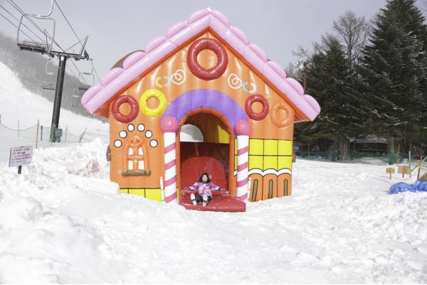 https://snow.gurunavi.com/guide/htm/r0038cnpg.htm