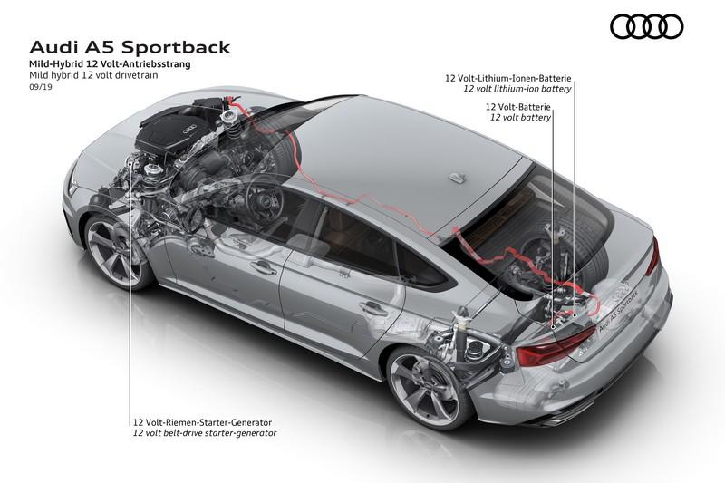 入門車型搭載12V輕油電,S5車型則是48V系統。