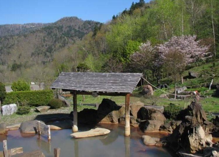 往年的黃金週過後到5月中左右是賞櫻的最佳時期〈照片提供:豐平峽溫泉〉