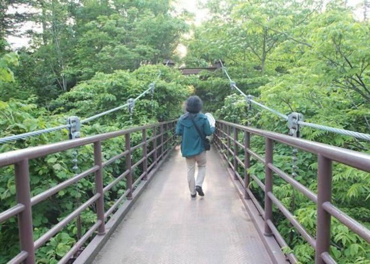 走過吊橋後便是姬沼了!