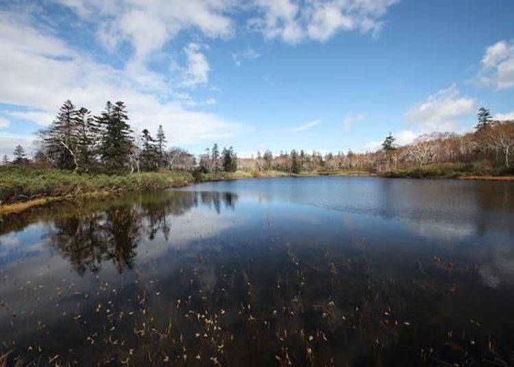 可在此欣賞優美的景色,這裡就如同沼澤的名稱一樣,宛如會冒出神仙或是仙人般,美到無法言語。