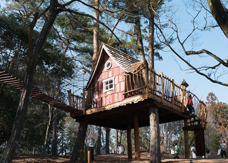 ▲爬上樓梯走過吊橋就能走進小木屋中,宛如在森林空中散步一樣