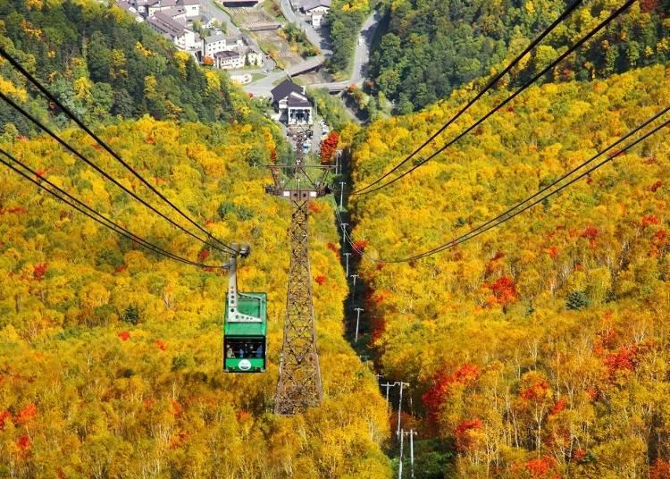 【秋】日本國內最早迎接秋季的黑岳。9~10月紅葉將山的一面妝點的如織如畫