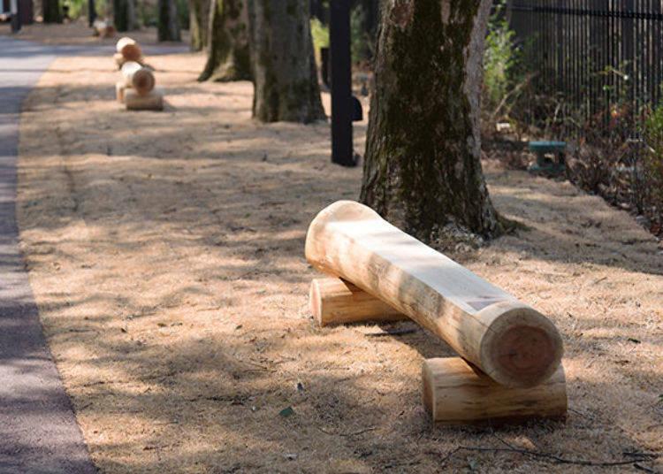 ▲放置著西川材製作的木椅