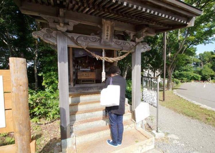 這個神社沒有設置香油錢箱, 但有100日圓的抽籤筒喔!