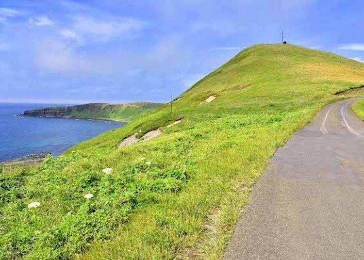 彎道與斜坡緊緊相連。