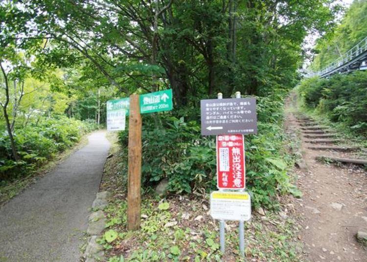 自然學習步道是整修過的柏油路(左),登山步道是跟著「Morisu Car」軌道的階梯(右)。兩條路的終點都是山頂