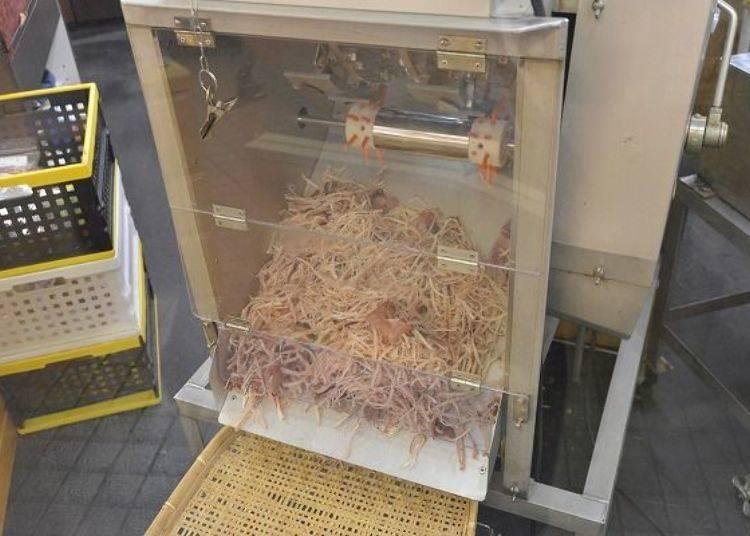 ▲在「Sakiya」可看到新鮮魷魚絲從機器裡不斷掉出來,香氣逼人!