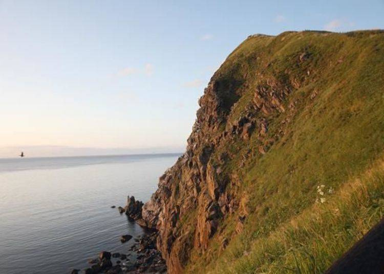 猶如巨大岩山的「Peshi岬」就聳立在眼前。