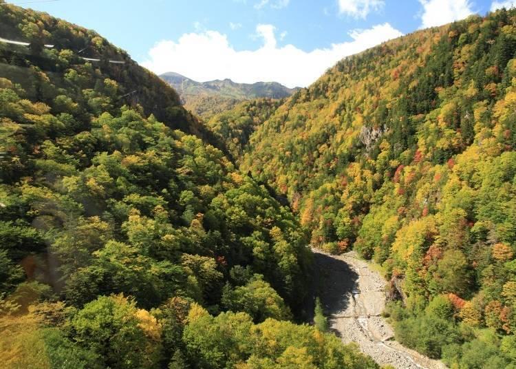 流洩於山間的黑岳澤。天氣好的時候還可以看到凌雲岳(照片中邊‧左右)及上川岳(照片中間)