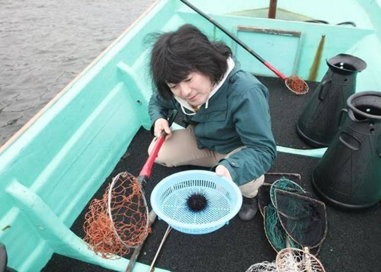 將抓到的海膽放到濾網盆,一手拿著濾網盆準備下船了。