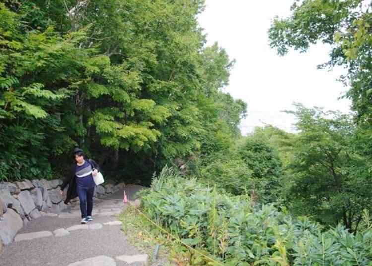 自然學習步道是屬於比較平緩的坡道