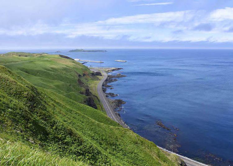 哇!從道路上可遠望這片蔚藍的日本海。