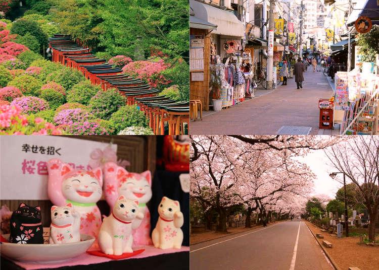 新手或再訪都適合的東京深度旅遊~漫步上野「谷根千」老街時不能錯過的10件事