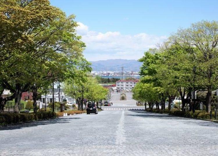 ▲在基坂沿途上回望,可看見港口風景!整體氛圍很舒適愜意!