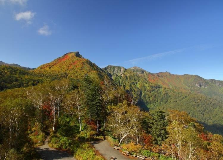 從黑岳站展望台望到的黑岳山頂