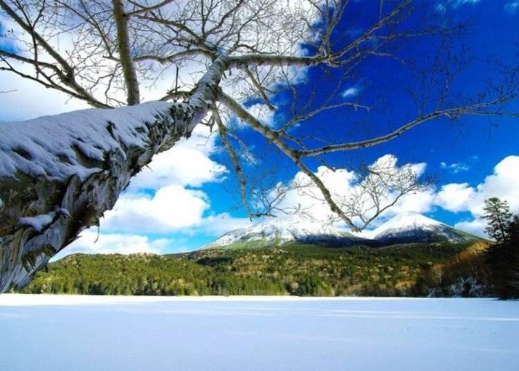 ▲過了十一月則可能看見遠內多湖的雪景,只不過十二月中到四月中為嚴寒冬季,國立公園內前往遠內多湖的道路是不對外開放的,因此也無法到湖周圍觀光了/照片提供:Ashoro Tourism Association