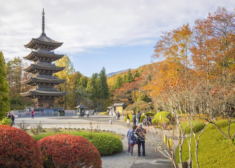 照片提供:(公財)仙台觀光國際協會