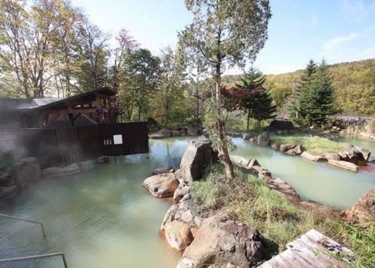 此飯店的特色就是有被稱之為「返老還童之湯」的2種泉質,以及巨大的庭園風混浴露天溫泉。