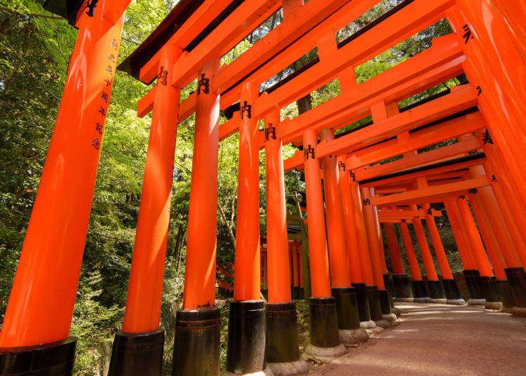 第一次玩京都就上手!京都觀光、美食、伴手禮各種情報懶人包