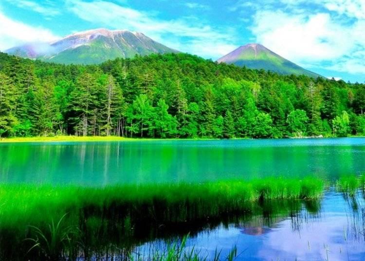 ▲帶有翡翠般鮮豔綠色的湖面,隨著角度及光照的不同顏色濃度及明暗也會有所變化。/照片提供:Ashoro Tourism Association