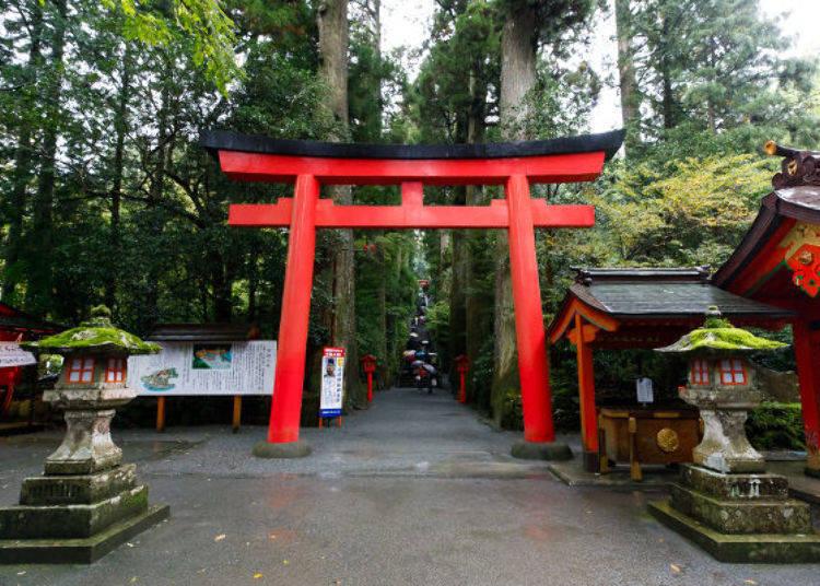 ▲穿過淨手舍旁的第四座鳥居,爬上石階後,就可見到箱根神社的御社殿