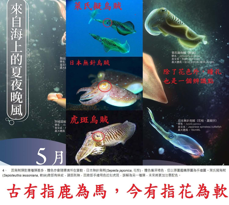 漁業 種類