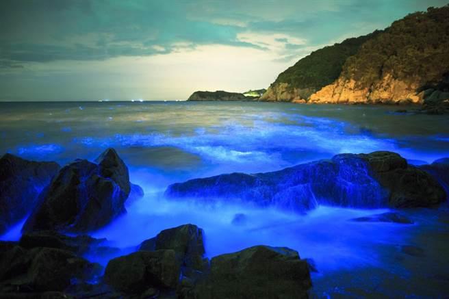 被CNN列為世界15大奇景之一的馬祖「藍眼淚」。圖:連江縣政府/提供