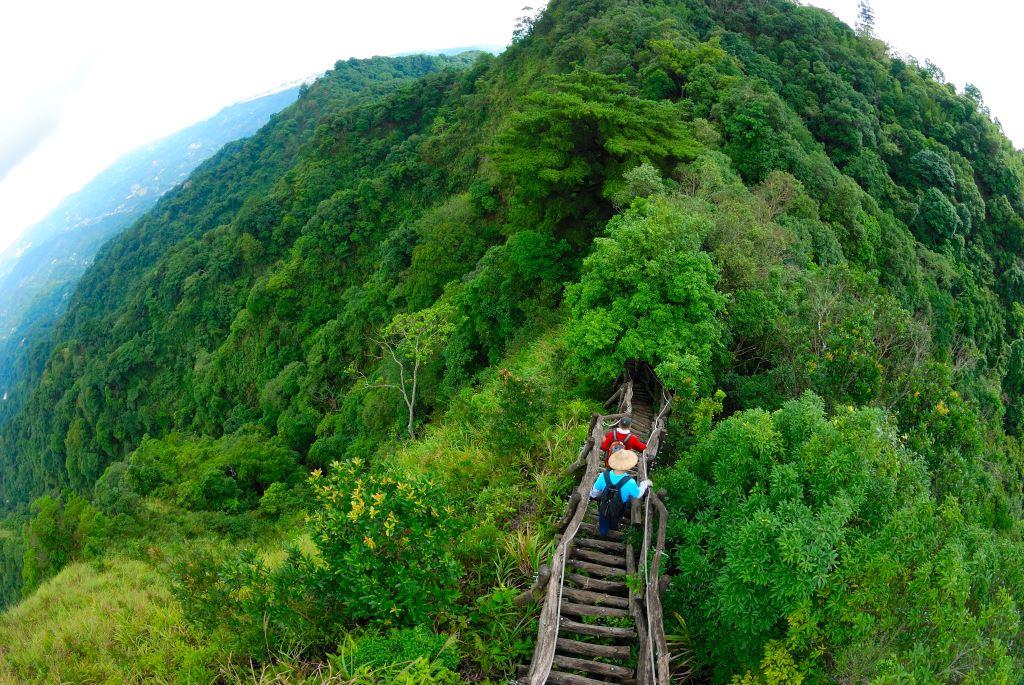 大坑5號步道沿著稜線而行,展望良好。圖:翻攝自台中觀光旅遊網官網